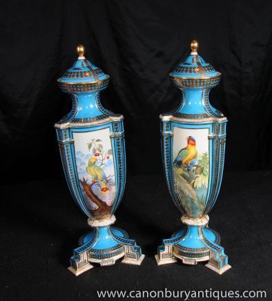 Paire porcelaine de Sèvres Parrot Bird amphores Vases poterie Française