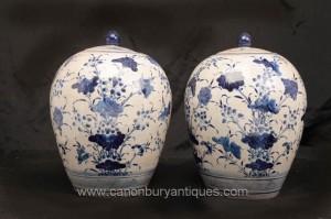 Paire Bleu et Blanc chinoise Ming en porcelaine à couvercle Urnes Vases