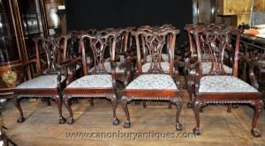 Réglez 12 chaises Chippendale Mahogany Arm Chaise Ball et pieds griffes