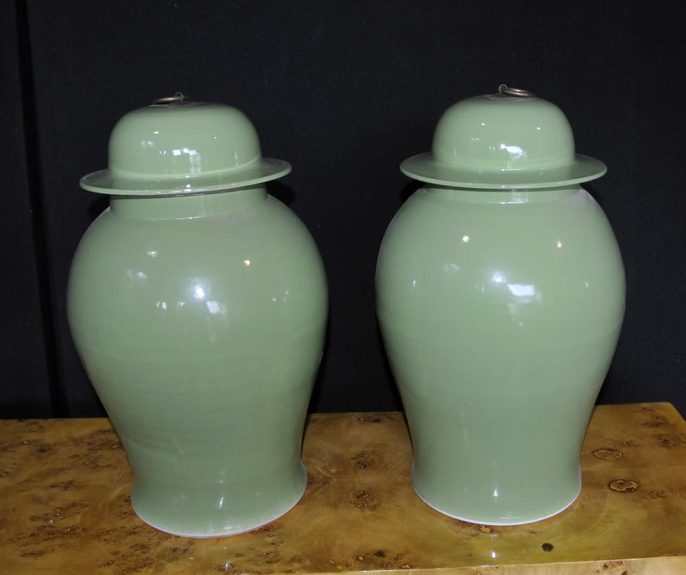 Paire Chinese Porcelain Ginger Jars Urnes Vases Kangxi
