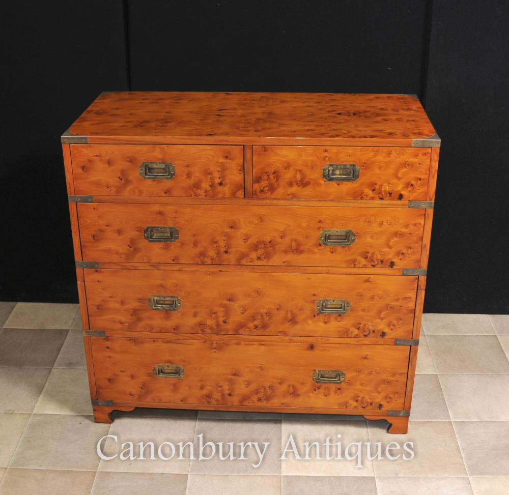 Anglais Campagne Chest Tiroirs Cabinet Satinwood Colonial Furniture