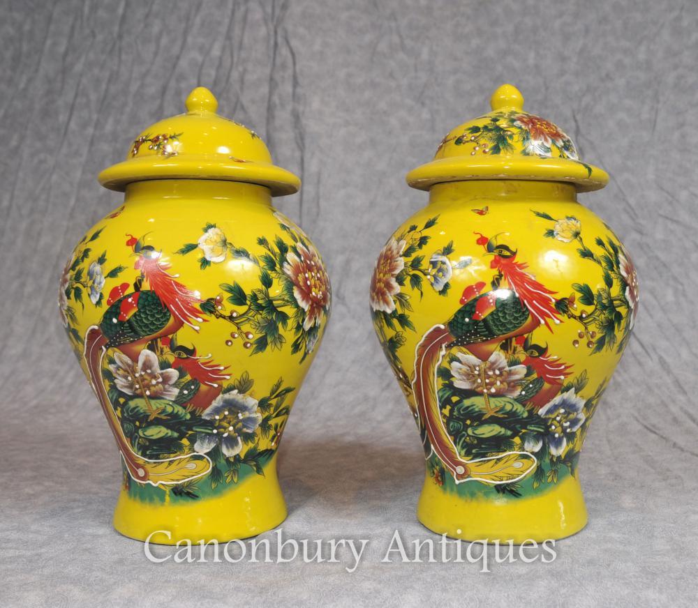 Paire Porcelaine chinoise Ming Porcelaine Urnes Temple Jars Oiseaux du Paradis