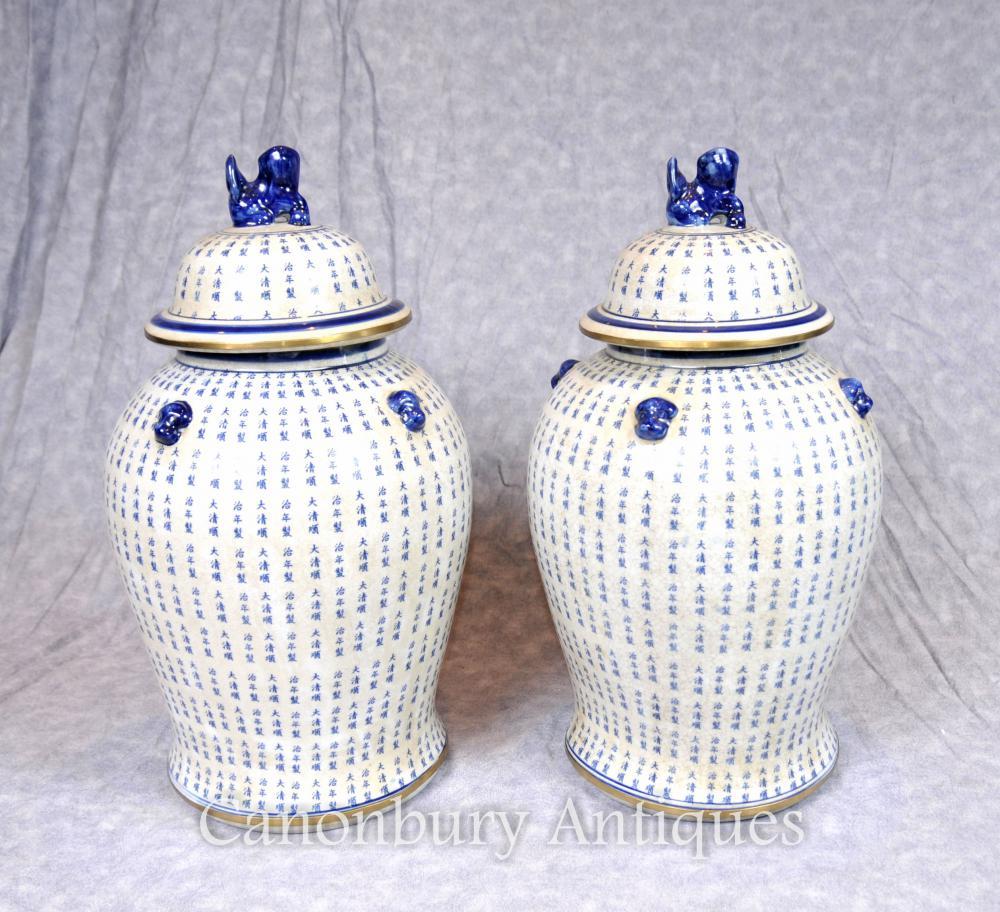Paire de flacons en porcelaine bleue et blanche Ming