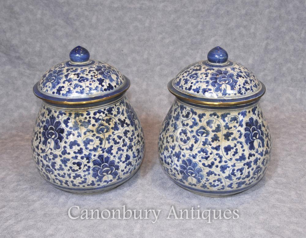 Paire de porcelaine chinoise bleue et blanche Lidded Urns Kangxi céramique
