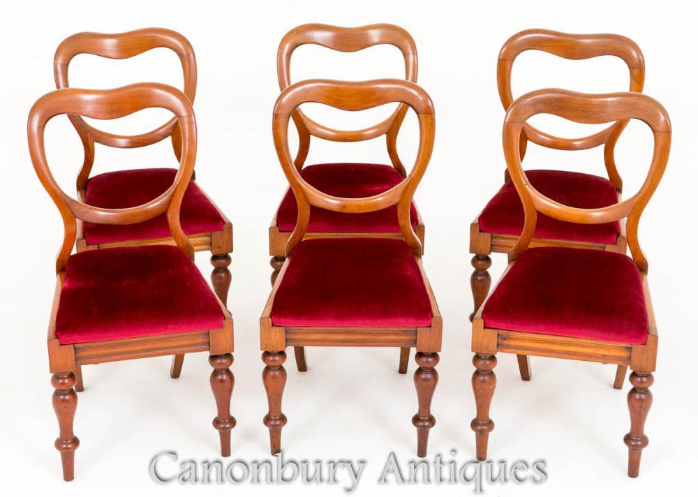 Ensemble 6 chaises de chaises anciennes en moko victorien