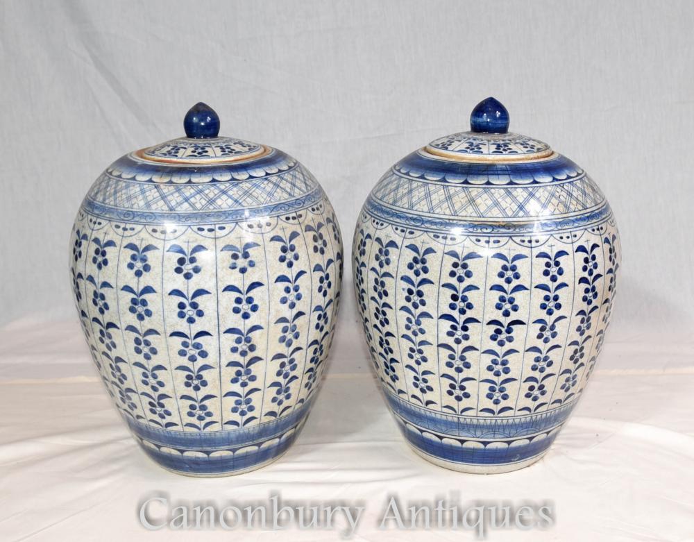 Paire d'urnes à couvercle en porcelaine bleue et blanche Ming Pots à vases chinois